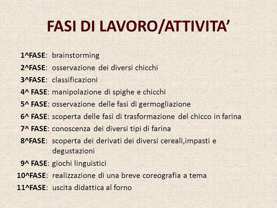 FASI DI LAVORO/ATTIVITA'