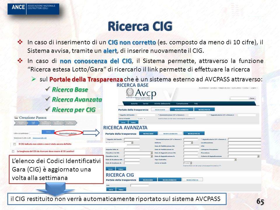 Ricerca CIG