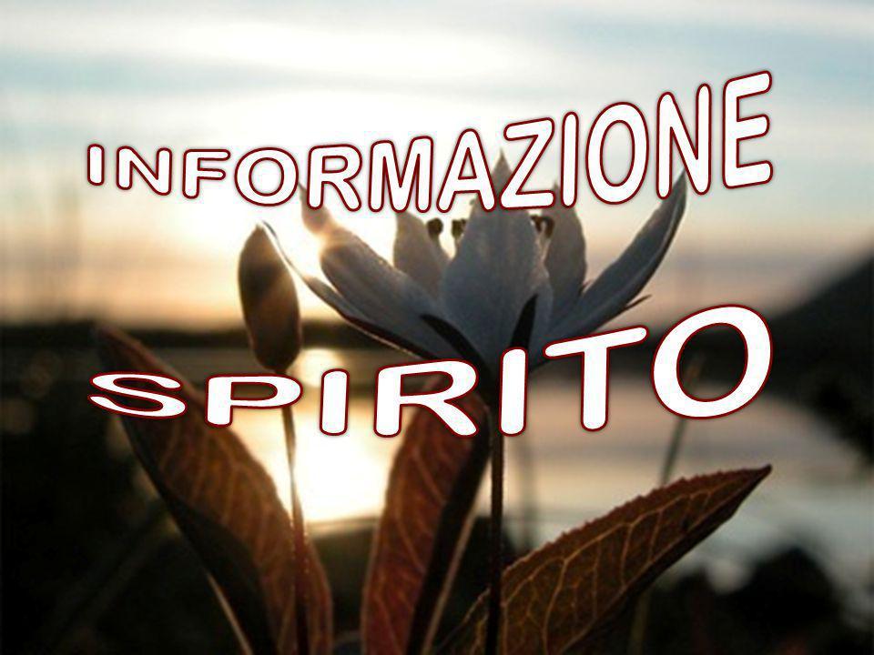 INFORMAZIONE SPIRITO