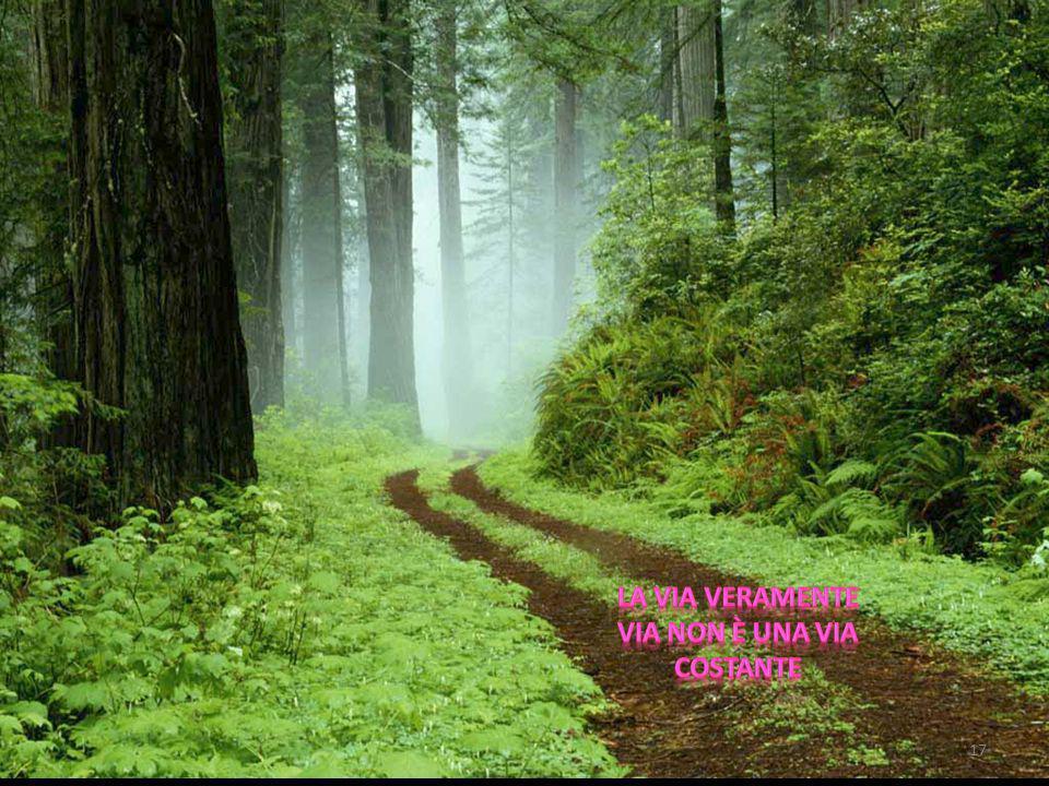 La via veramente via non è una via costante