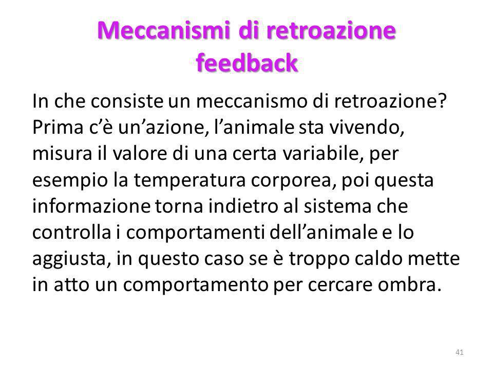 Meccanismi di retroazione feedback