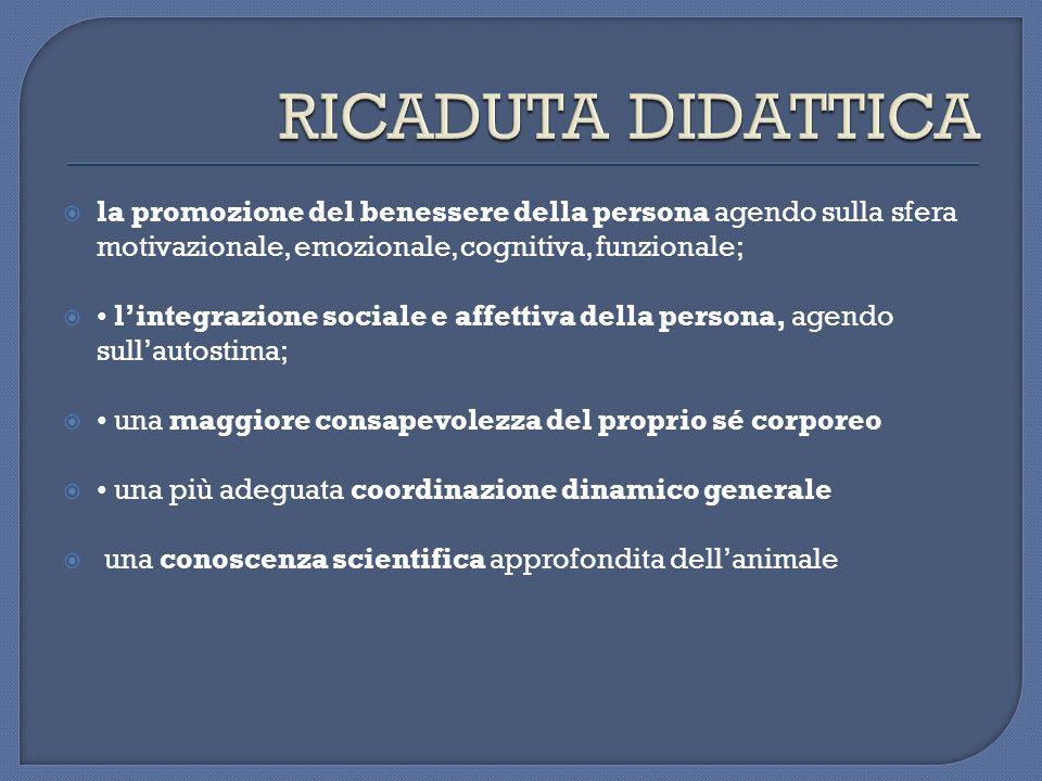 RICADUTA DIDATTICA la promozione del benessere della persona agendo sulla sfera motivazionale, emozionale, cognitiva, funzionale;