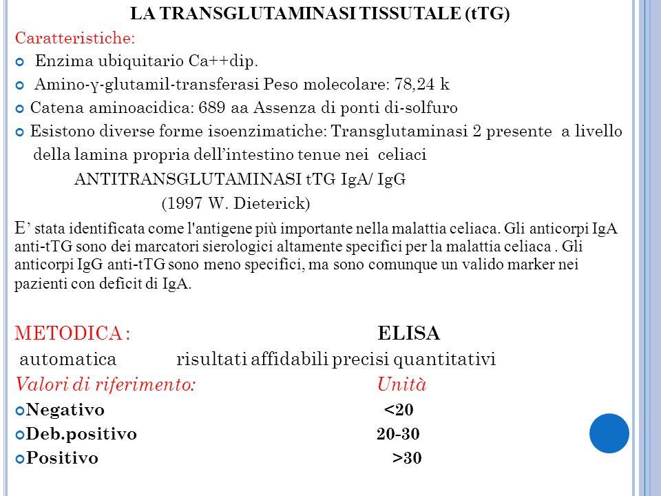 LA TRANSGLUTAMINASI TISSUTALE (tTG)