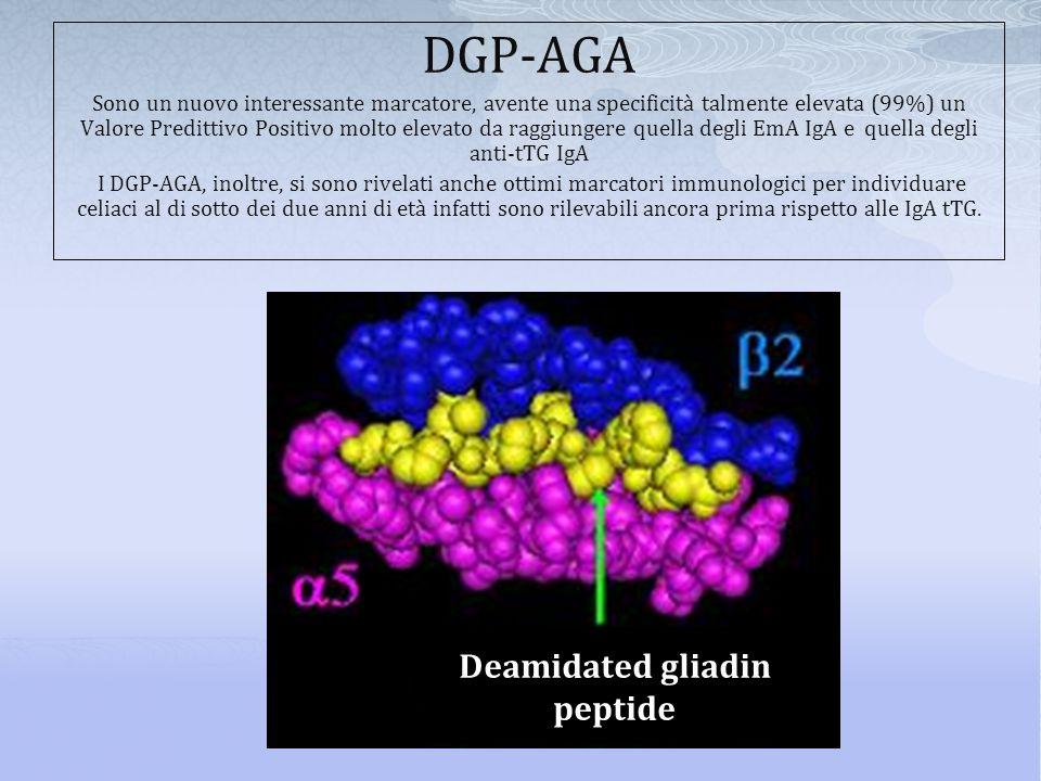 DGP-AGA Deamidated gliadin peptide