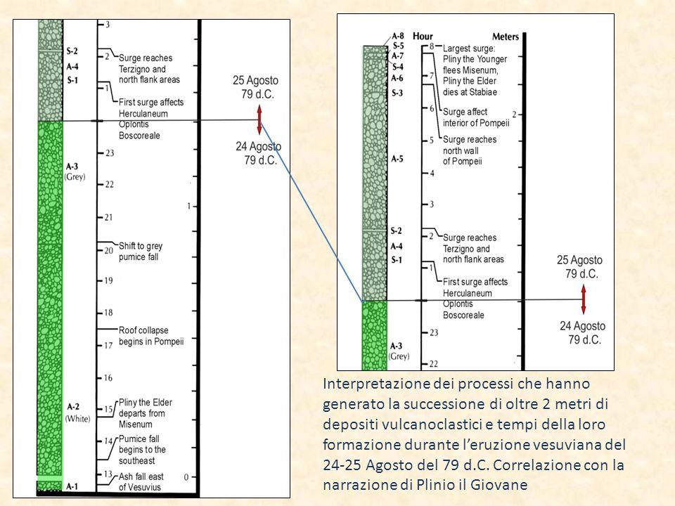 Interpretazione dei processi che hanno generato la successione di oltre 2 metri di depositi vulcanoclastici e tempi della loro formazione durante l'eruzione vesuviana del 24-25 Agosto del 79 d.C.