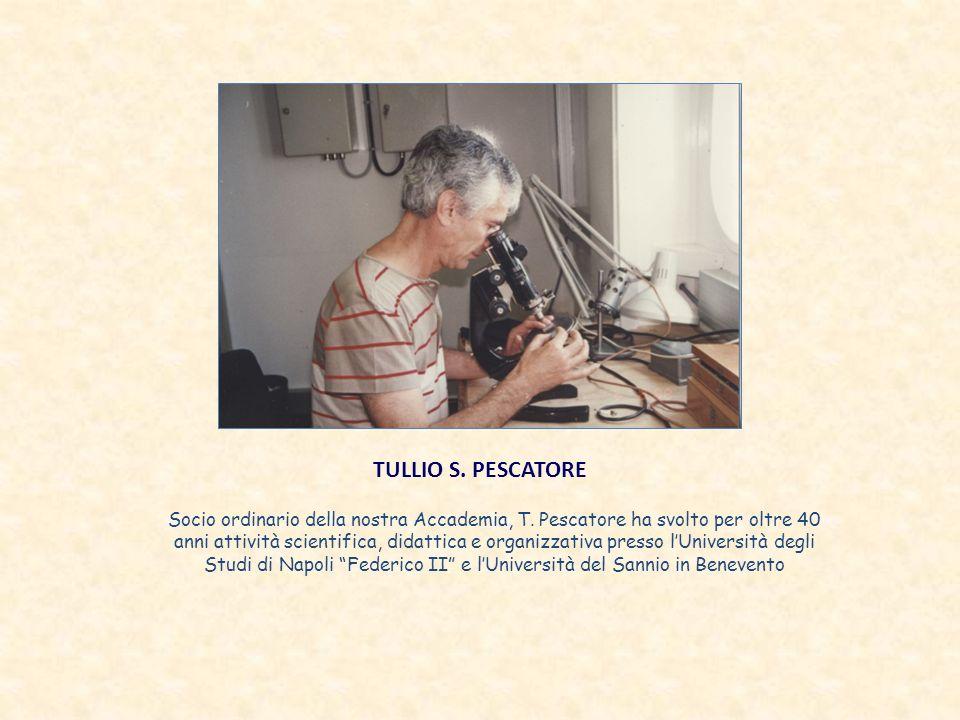 TULLIO S. PESCATORE