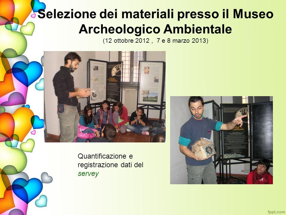 Selezione dei materiali presso il Museo Archeologico Ambientale (12 ottobre 2012 , 7 e 8 marzo 2013)