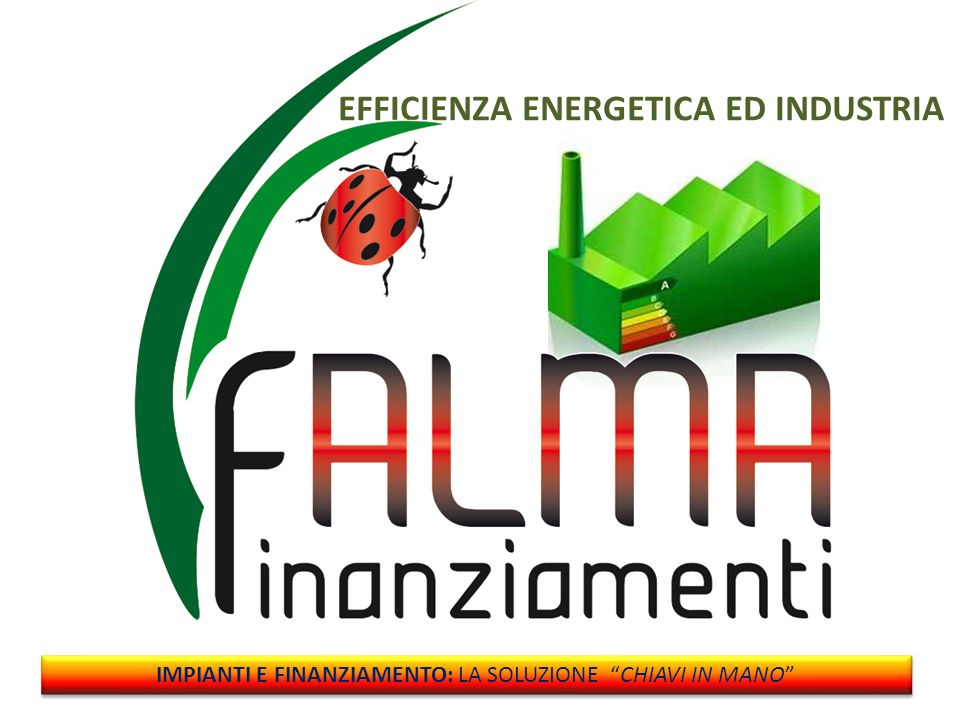 EFFICIENZA ENERGETICA ED INDUSTRIA