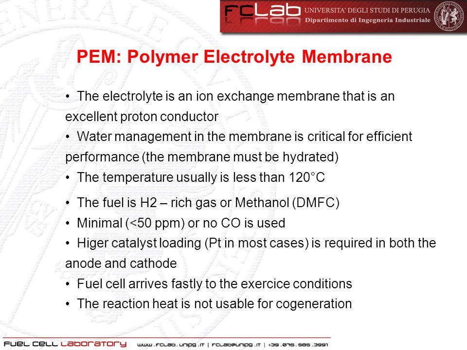 PEM: Polymer Electrolyte Membrane