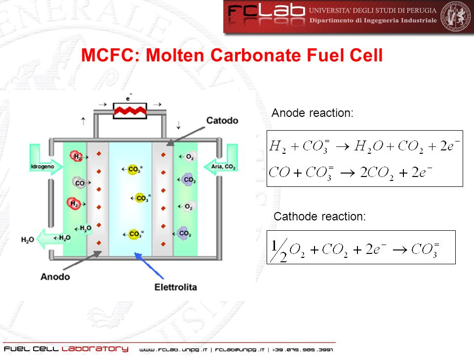 MCFC: Molten Carbonate Fuel Cell