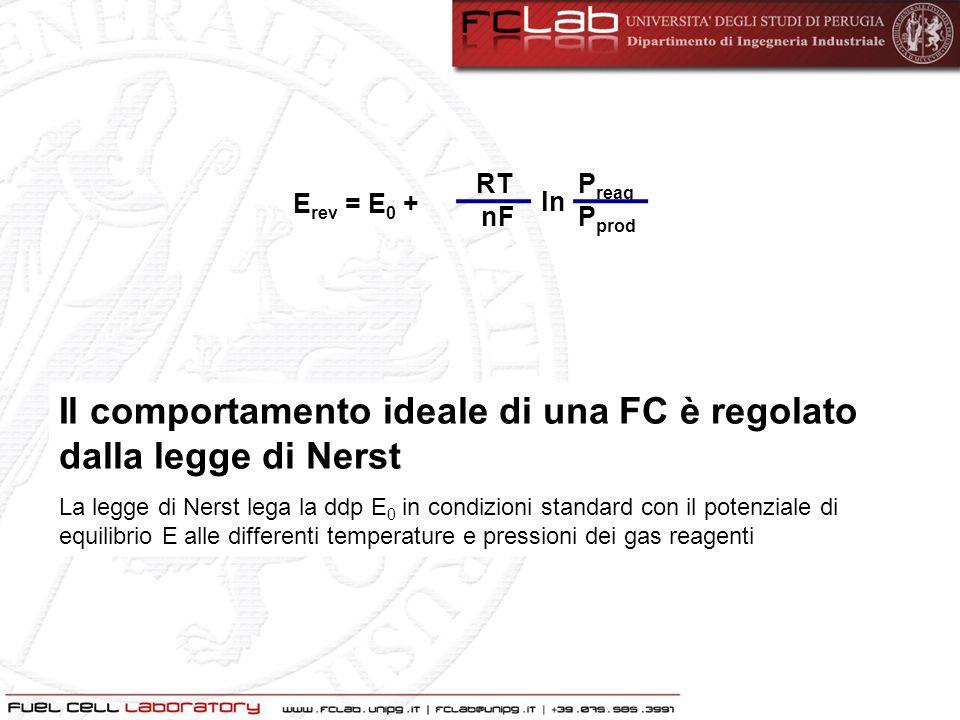 Il comportamento ideale di una FC è regolato dalla legge di Nerst