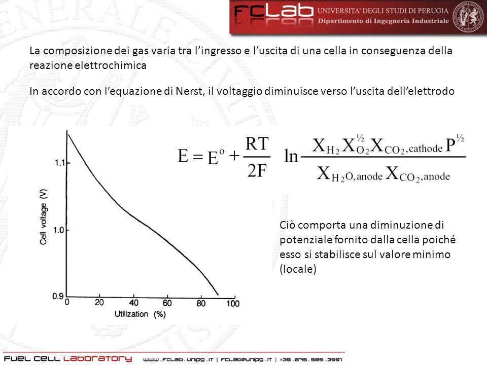 La composizione dei gas varia tra l'ingresso e l'uscita di una cella in conseguenza della reazione elettrochimica