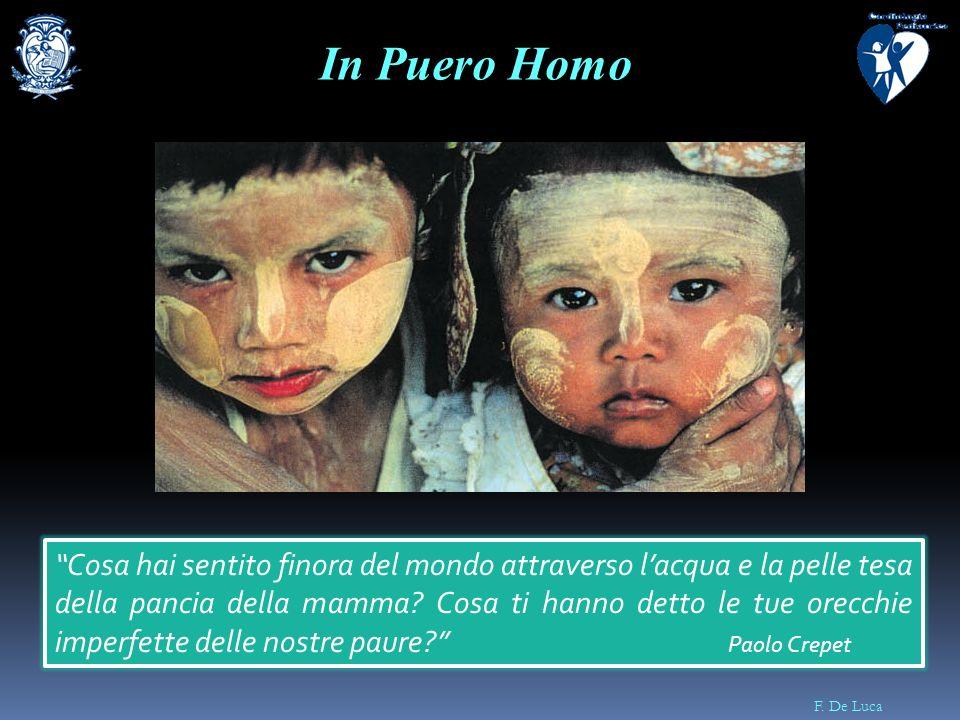 In Puero Homo