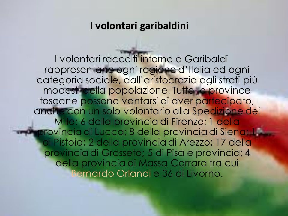 I volontari garibaldini