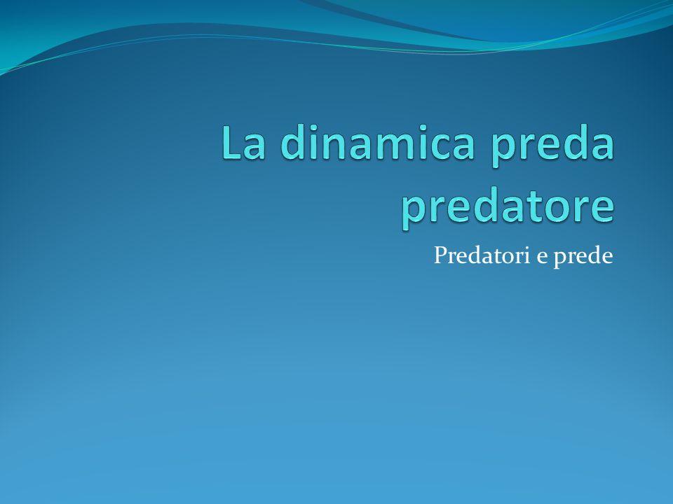 La dinamica preda predatore
