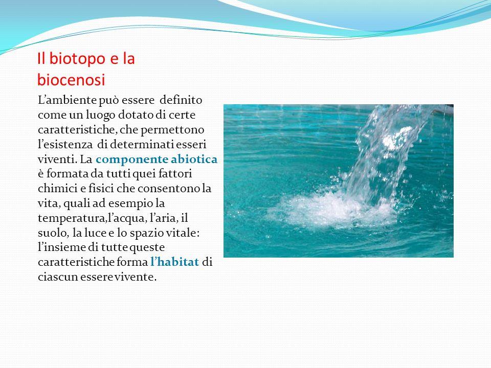 Il biotopo e la biocenosi