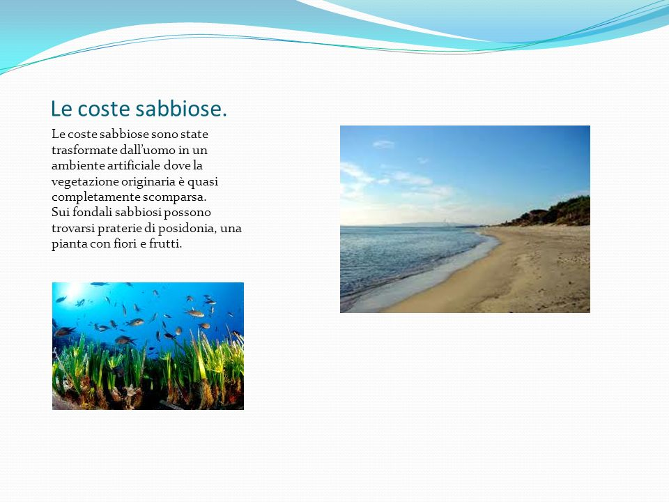 Le coste sabbiose.