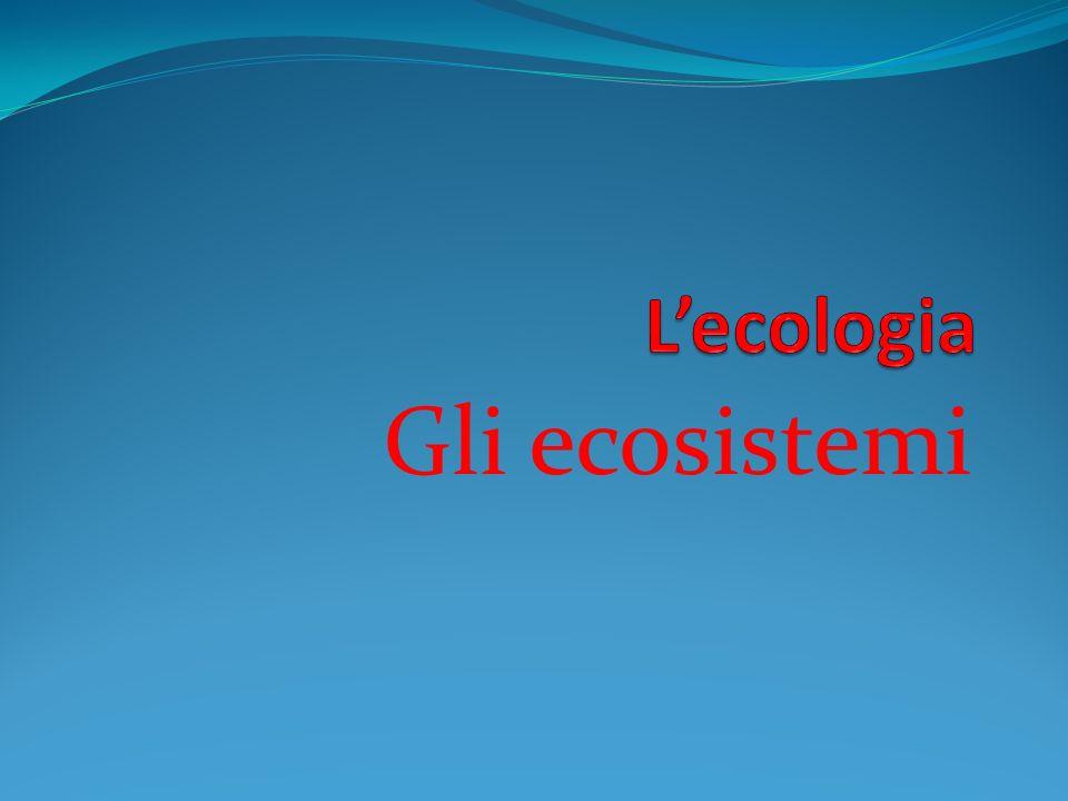 L'ecologia Gli ecosistemi