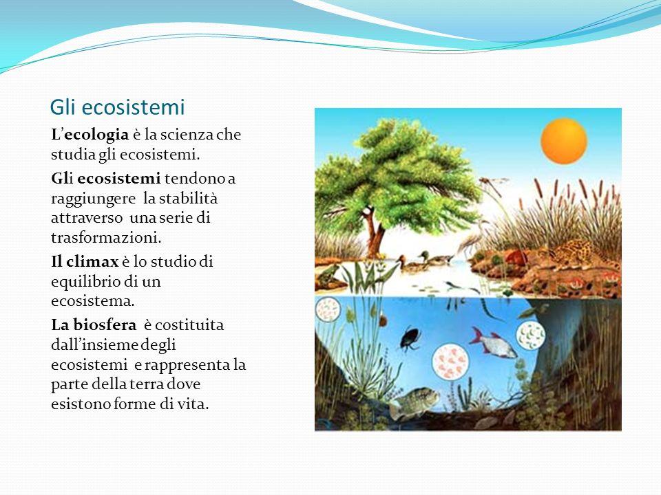 Gli ecosistemi L'ecologia è la scienza che studia gli ecosistemi.