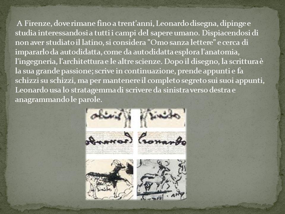 A Firenze, dove rimane fino a trent anni, Leonardo disegna, dipinge e studia interessandosi a tutti i campi del sapere umano.