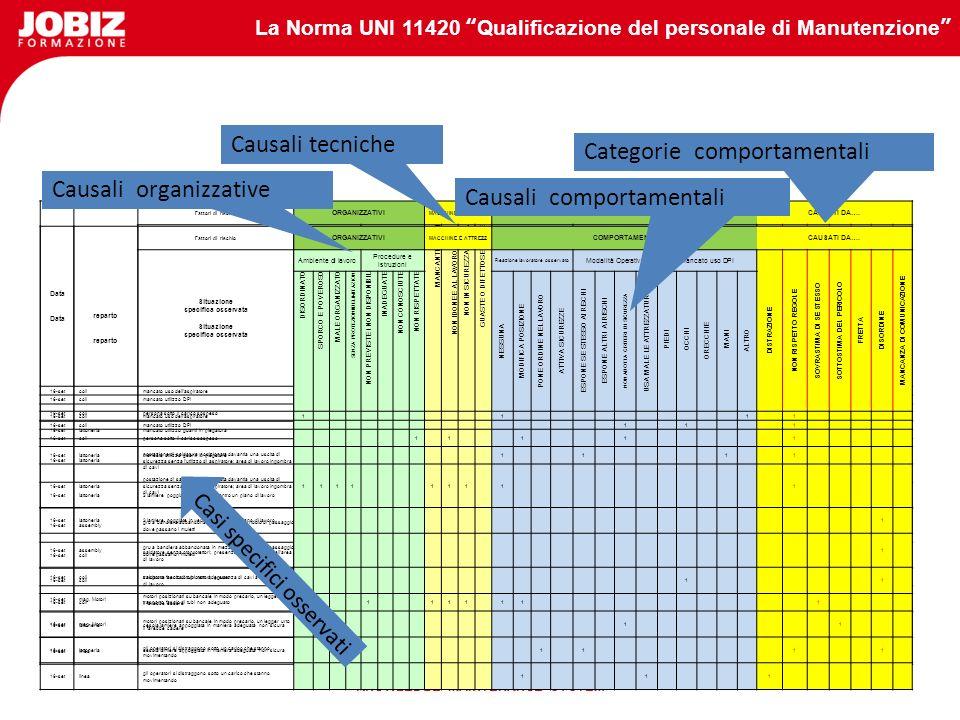 Categorie comportamentali Causali organizzative
