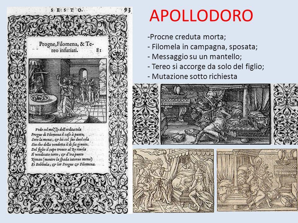 APOLLODORO Procne creduta morta; Filomela in campagna, sposata;
