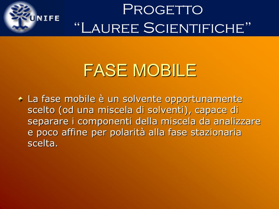 Lauree Scientifiche