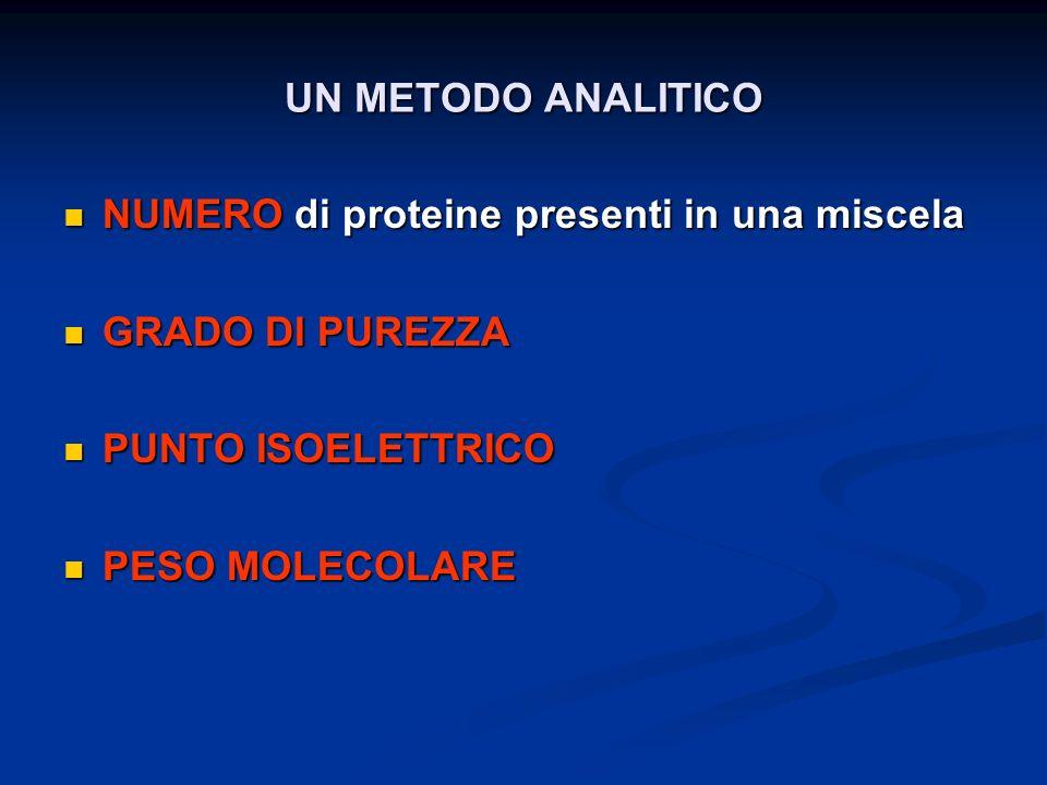UN METODO ANALITICO NUMERO di proteine presenti in una miscela. GRADO DI PUREZZA. PUNTO ISOELETTRICO.