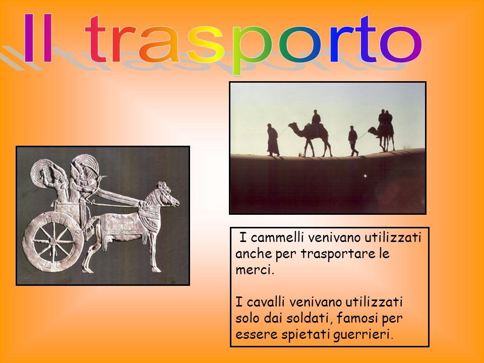 Il trasporto I cammelli venivano utilizzati anche per trasportare le merci.