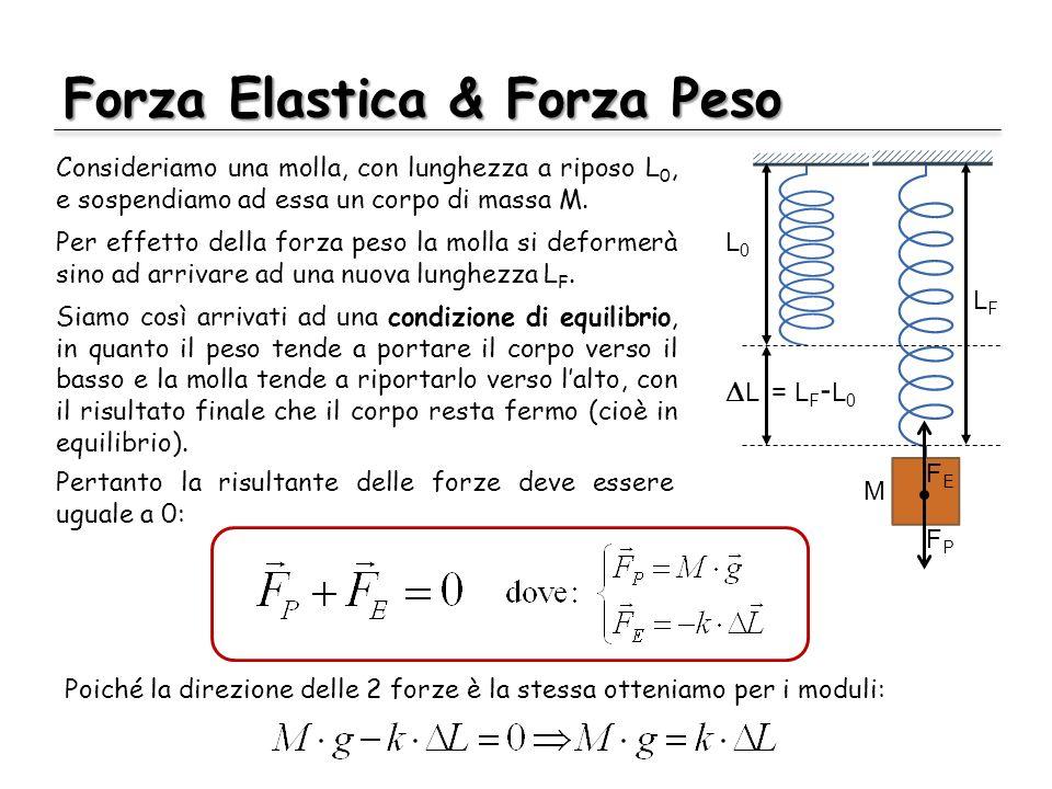Forza Elastica & Forza Peso