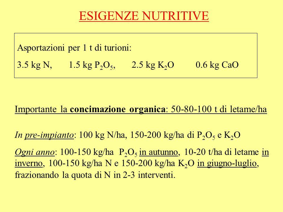 ESIGENZE NUTRITIVE Asportazioni per 1 t di turioni: 3.5 kg N, 1.5 kg P2O5, 2.5 kg K2O 0.6 kg CaO.