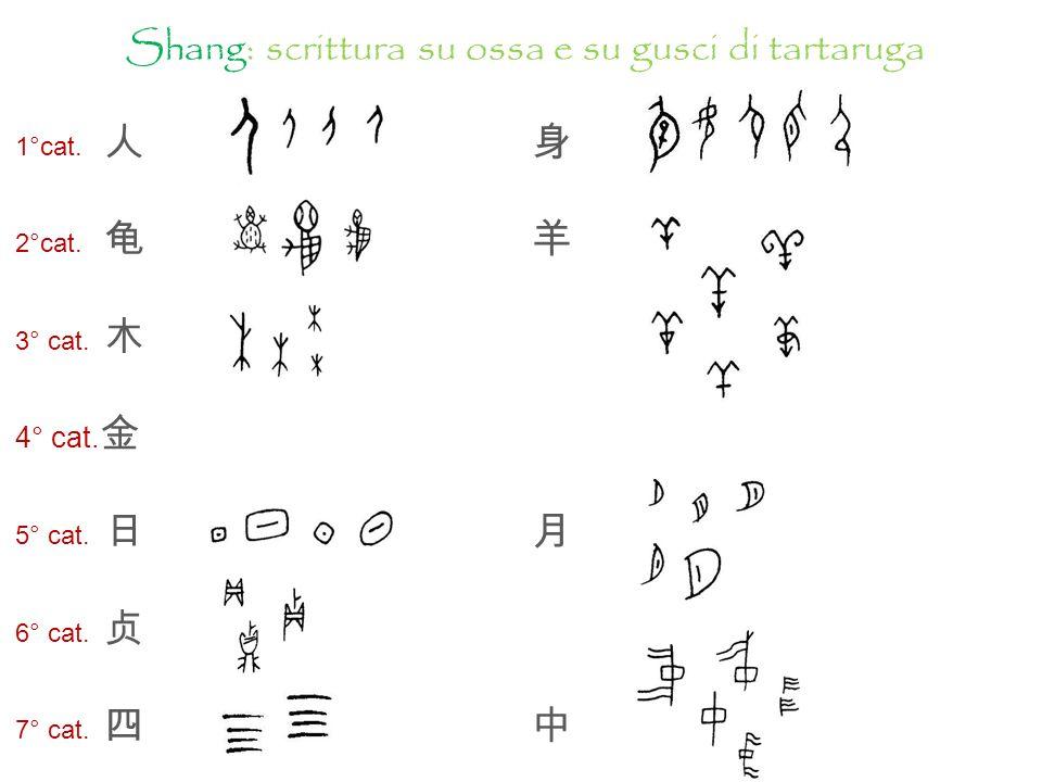 Shang: scrittura su ossa e su gusci di tartaruga