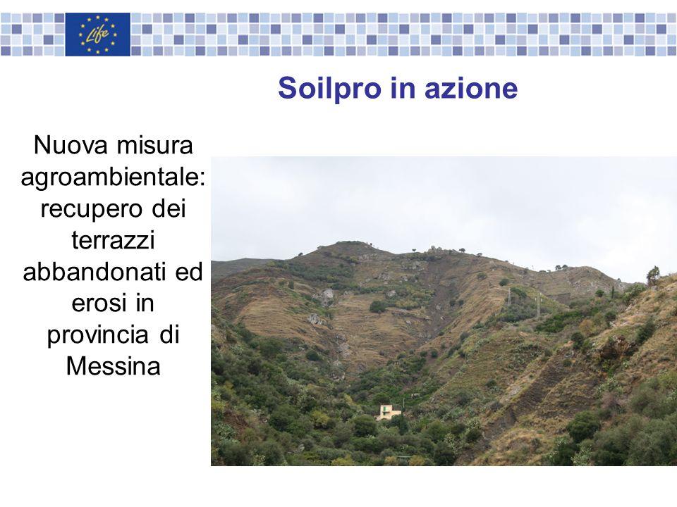 Soilpro in azioneNuova misura agroambientale: recupero dei terrazzi abbandonati ed erosi in provincia di Messina.