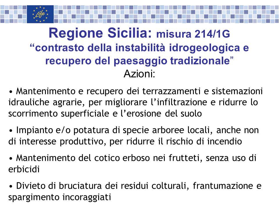 Regione Sicilia: misura 214/1G contrasto della instabilità idrogeologica e recupero del paesaggio tradizionale Azioni: