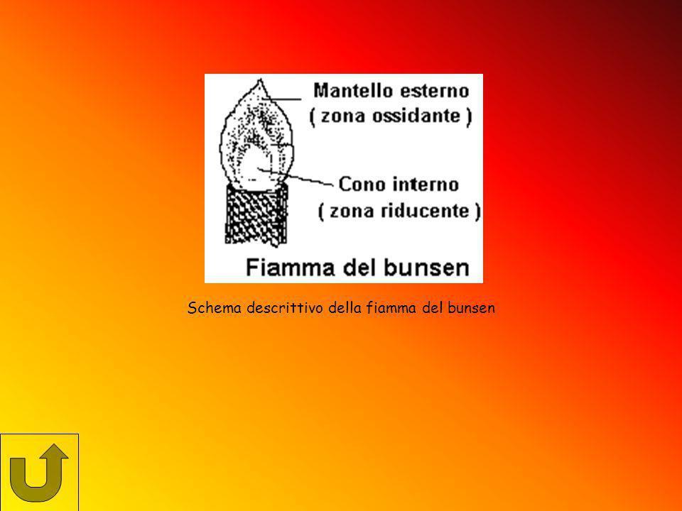 Schema descrittivo della fiamma del bunsen