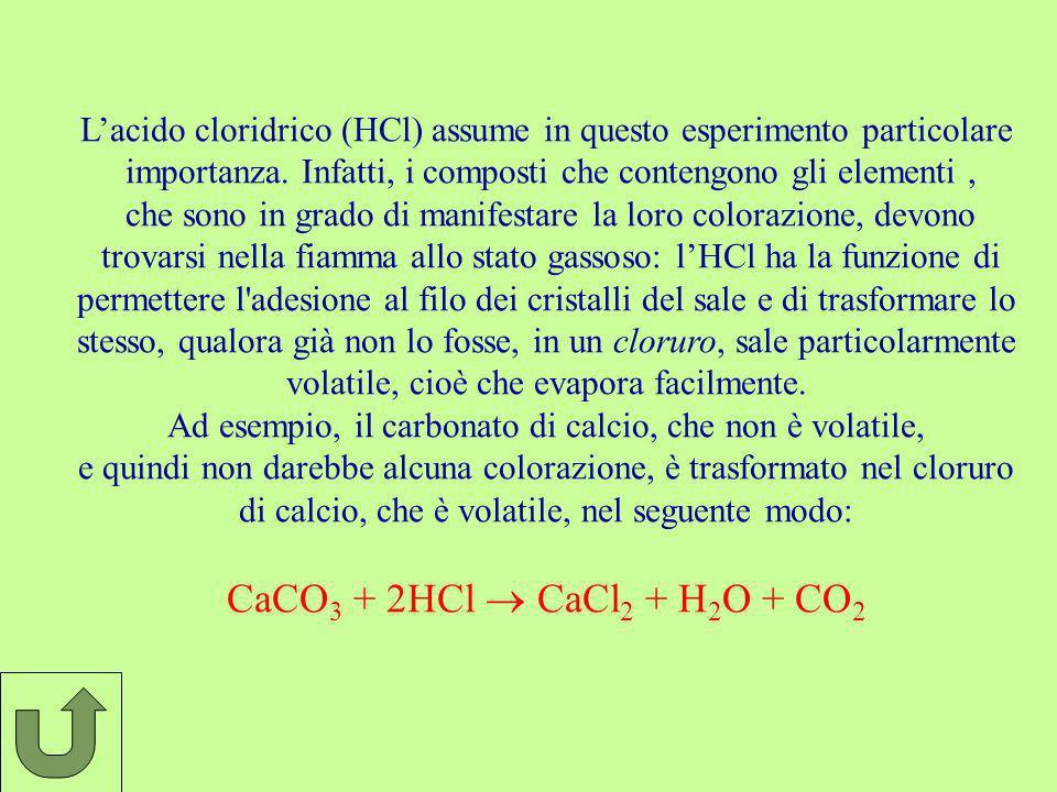 L'acido cloridrico (HCl) assume in questo esperimento particolare
