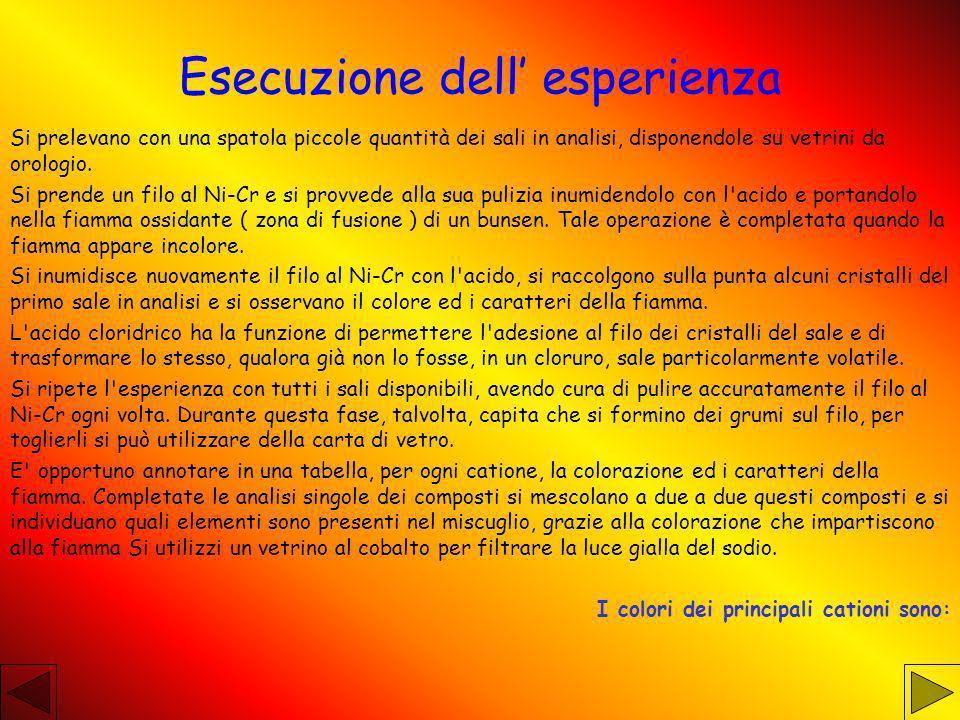 Esecuzione dell' esperienza