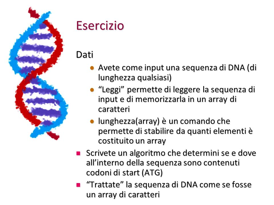 Esercizio Dati. Avete come input una sequenza di DNA (di lunghezza qualsiasi)