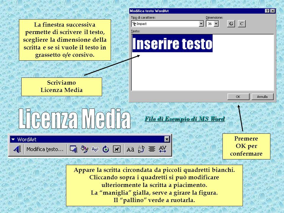 La finestra successiva permette di scrivere il testo, scegliere la dimensione della scritta e se si vuole il testo in grassetto o/e corsivo.