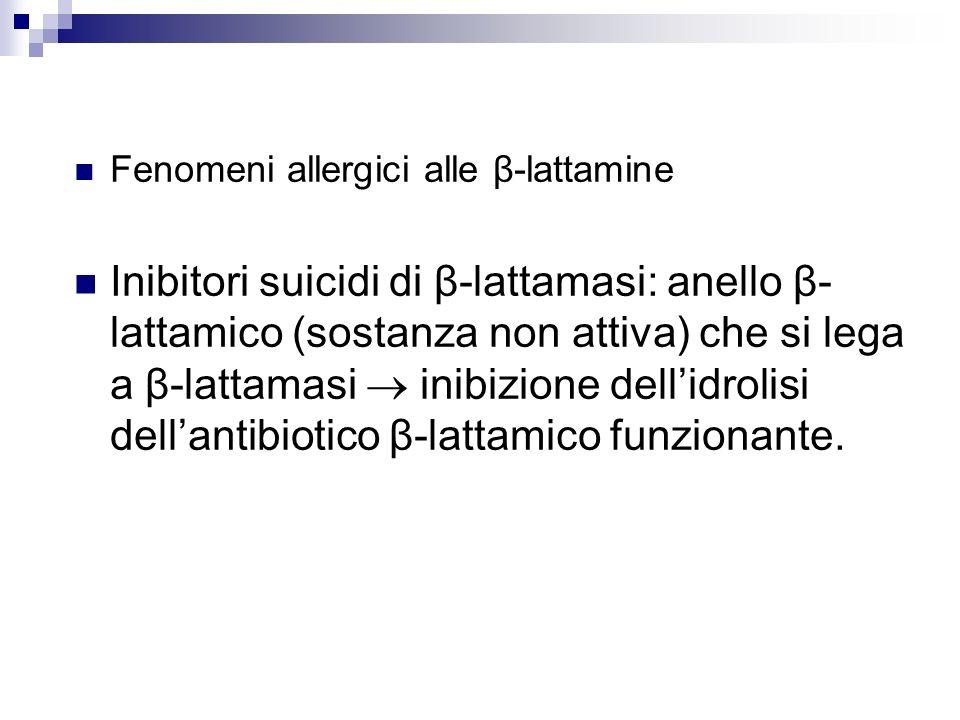 Fenomeni allergici alle β-lattamine
