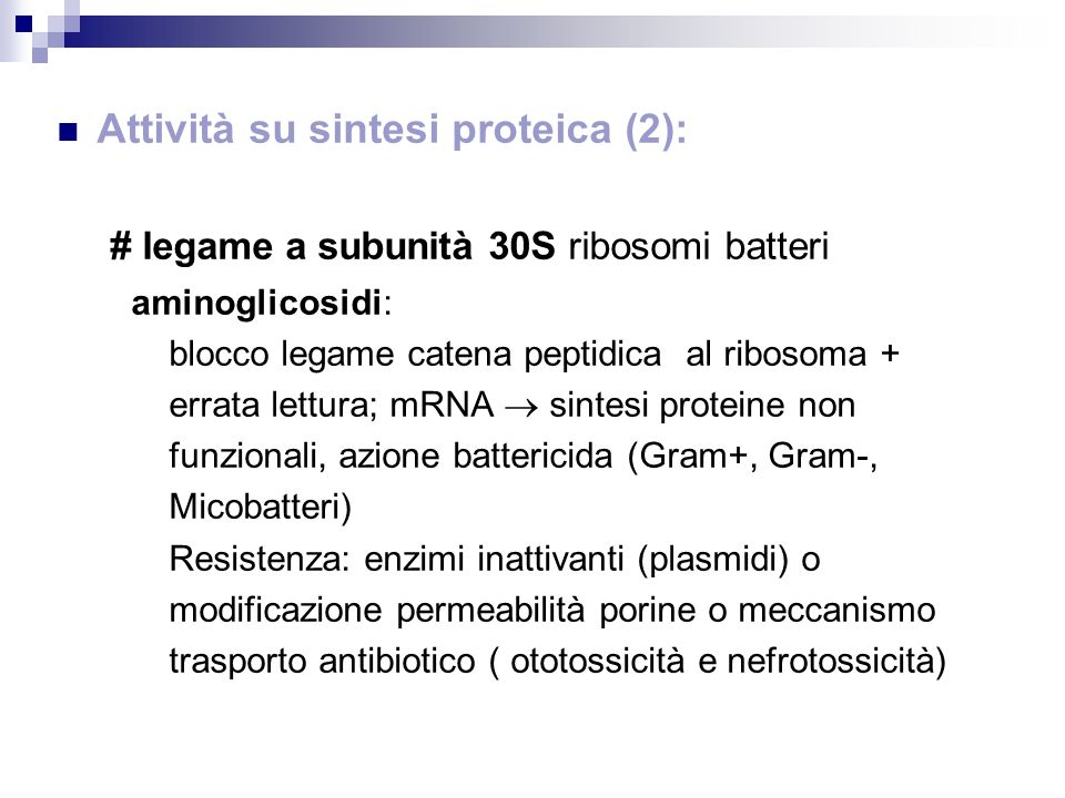Attività su sintesi proteica (2):