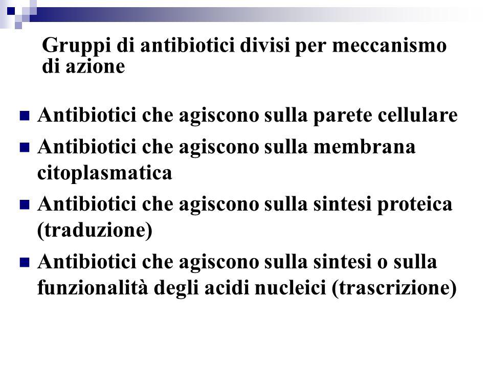 Gruppi di antibiotici divisi per meccanismo di azione