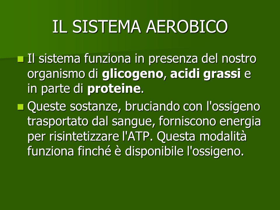 IL SISTEMA AEROBICO Il sistema funziona in presenza del nostro organismo di glicogeno, acidi grassi e in parte di proteine.