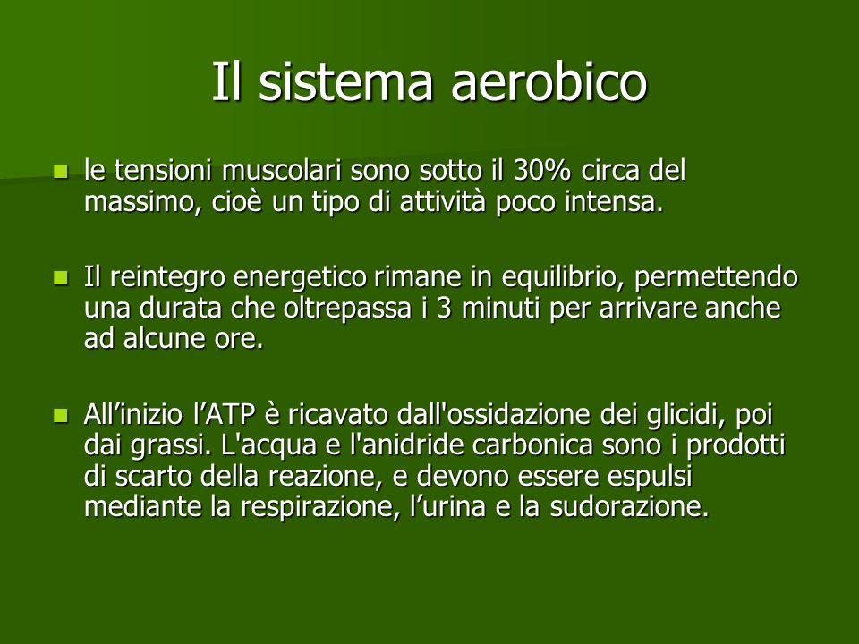Il sistema aerobico le tensioni muscolari sono sotto il 30% circa del massimo, cioè un tipo di attività poco intensa.