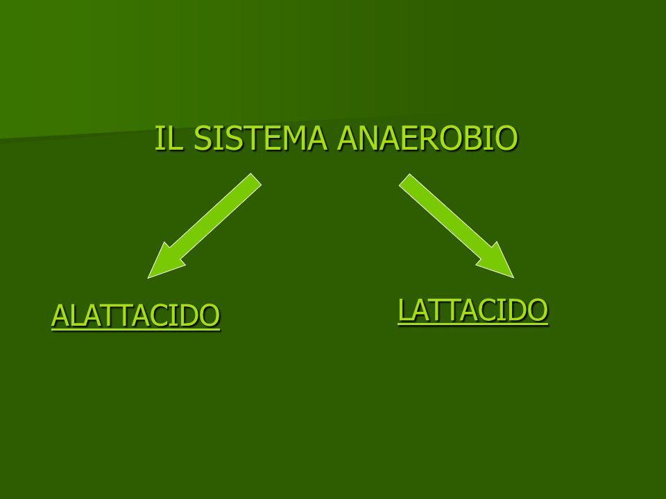 IL SISTEMA ANAEROBIO LATTACIDO ALATTACIDO