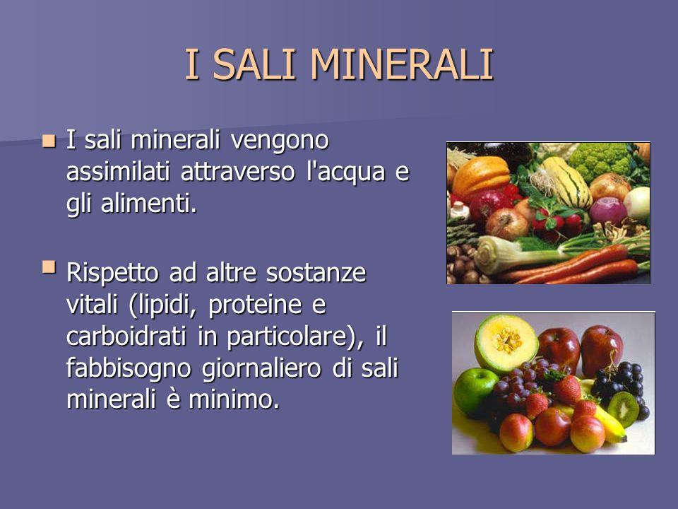 I SALI MINERALI I sali minerali vengono assimilati attraverso l acqua e gli alimenti.