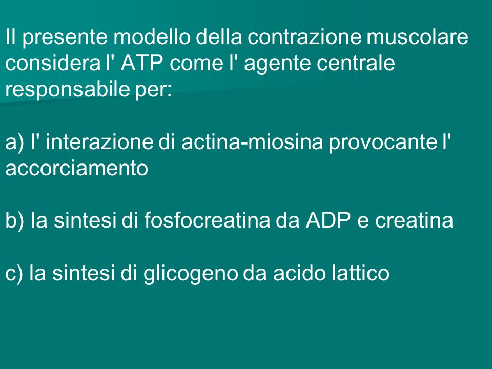 Il presente modello della contrazione muscolare considera l ATP come l agente centrale responsabile per: