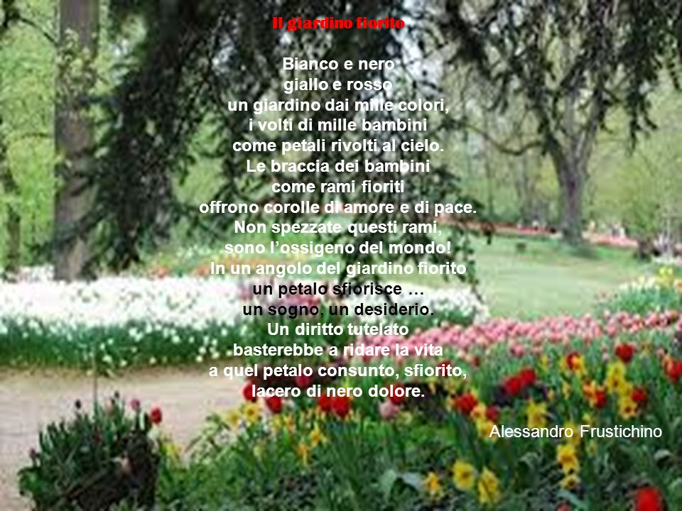 un giardino dai mille colori, i volti di mille bambini
