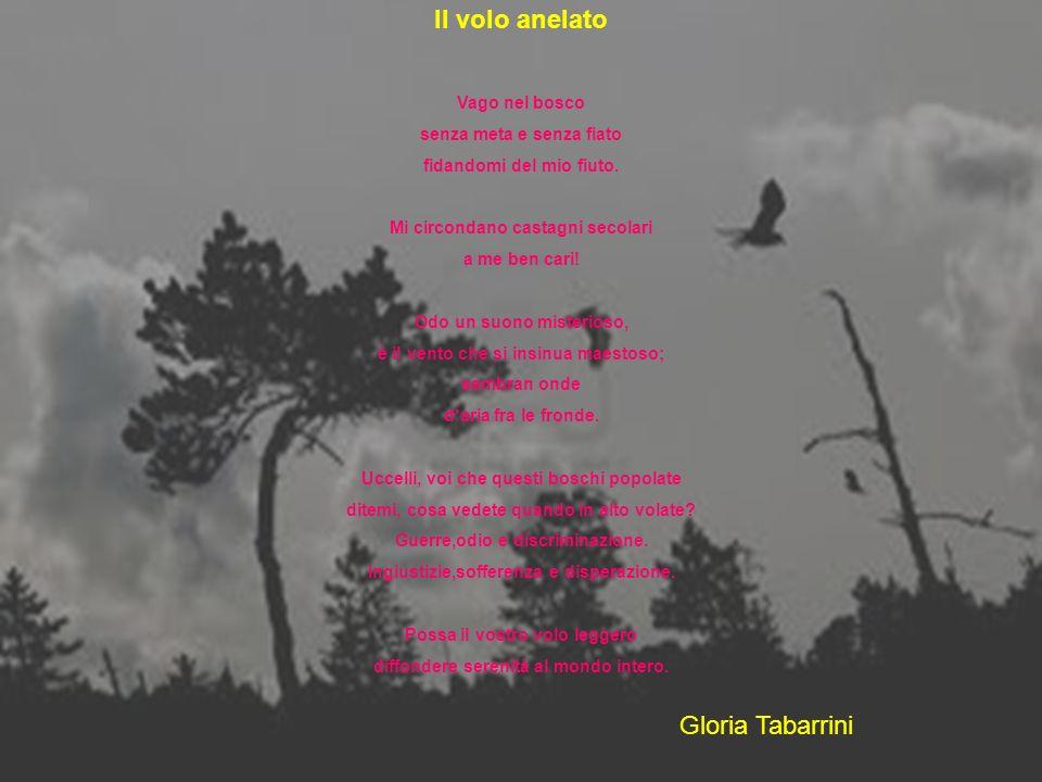Il volo anelato Gloria Tabarrini Vago nel bosco