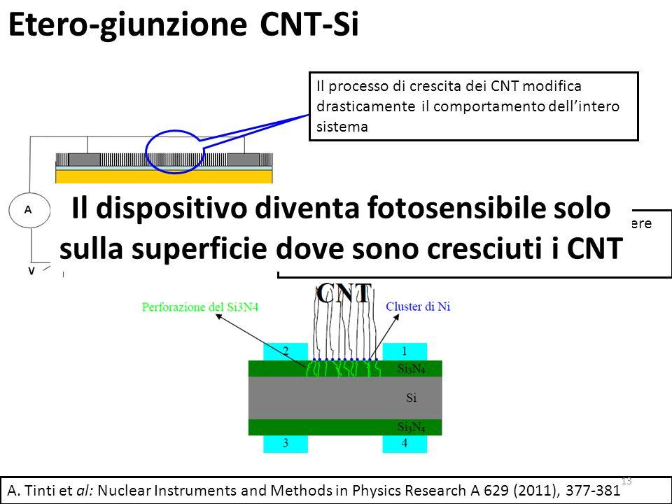 Etero-giunzione CNT-Si